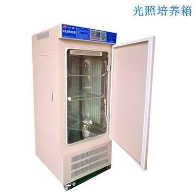 MGC-300扬州300L智能光照培养箱
