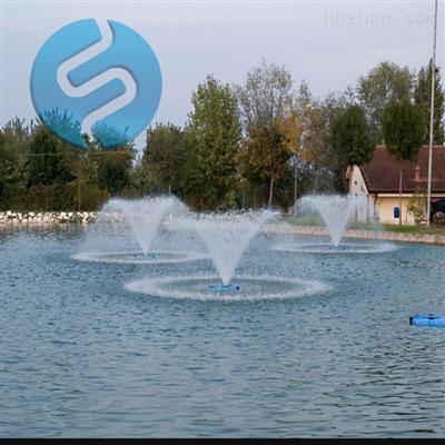 喇叭花带中心水柱式喷泉曝气机
