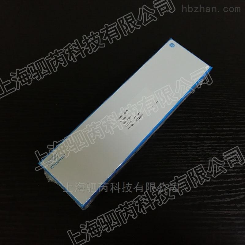 Whatman直径32mm QMA石英滤膜