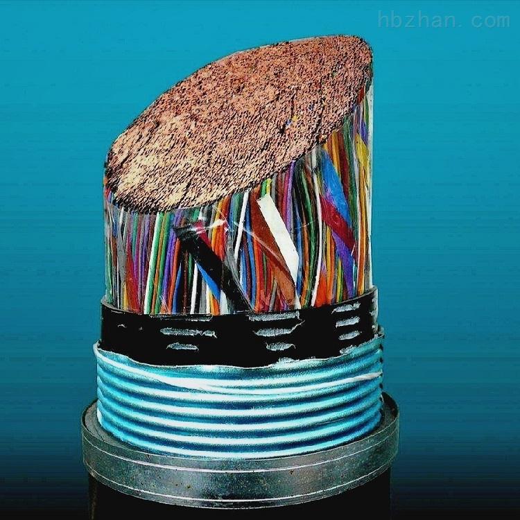 HYAC电话电缆HYAC通信电缆HYAC电话线100*2*0.6