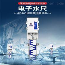 RS-DR-N01-1建大仁科电子水尺湖泊水库灌溉水位测量