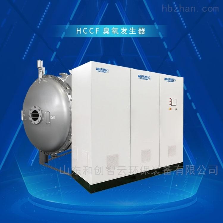 山东大型臭氧发生器水处理消毒设备