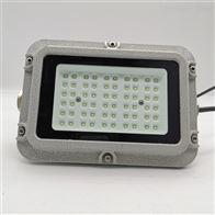 ZL8920-L25免维护防爆防腐照明灯