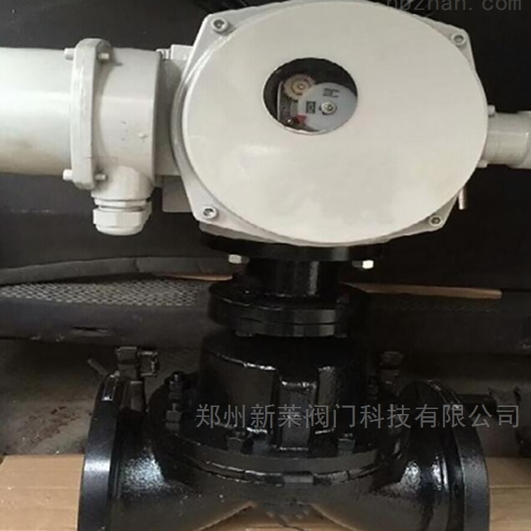 EG941J-10电动英标衬胶隔膜阀