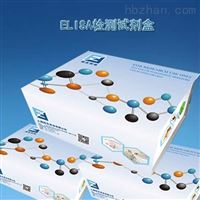 48T/96T白介素-8(IL-8)Elisa试剂盒