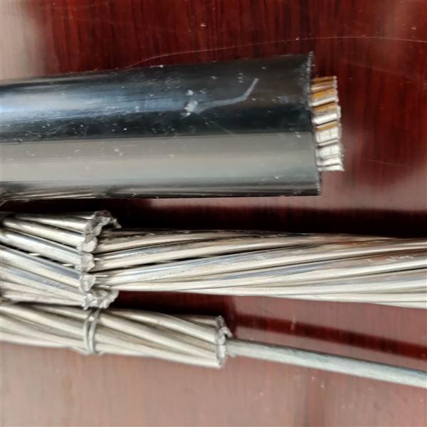 JL/G1A钢芯铝绞线供应300/50