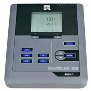 YSI4010-1多参数水质检测仪