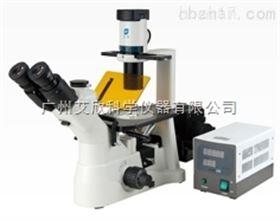 XD-RFL系列倒置荧光显微镜