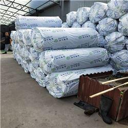DN10-DN30B1级橡塑保温板厂家 零售厂家