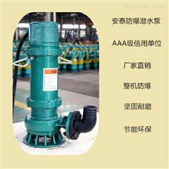 316不锈钢防爆污水泵