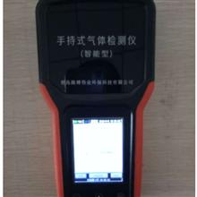 LB-CP-VOC-LB-CP-VOC气体检测仪