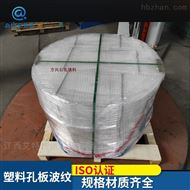 DN95脱硫脱酸填料