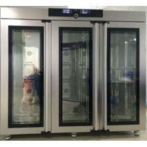 半导体低温培养箱IPP2200plus