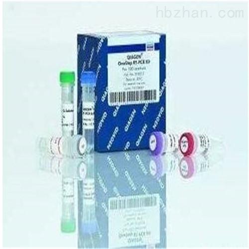 组织及血液碱性磷酸酶(AKP/ALP)