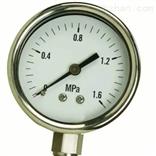YB-100不锈钢弹簧压力表