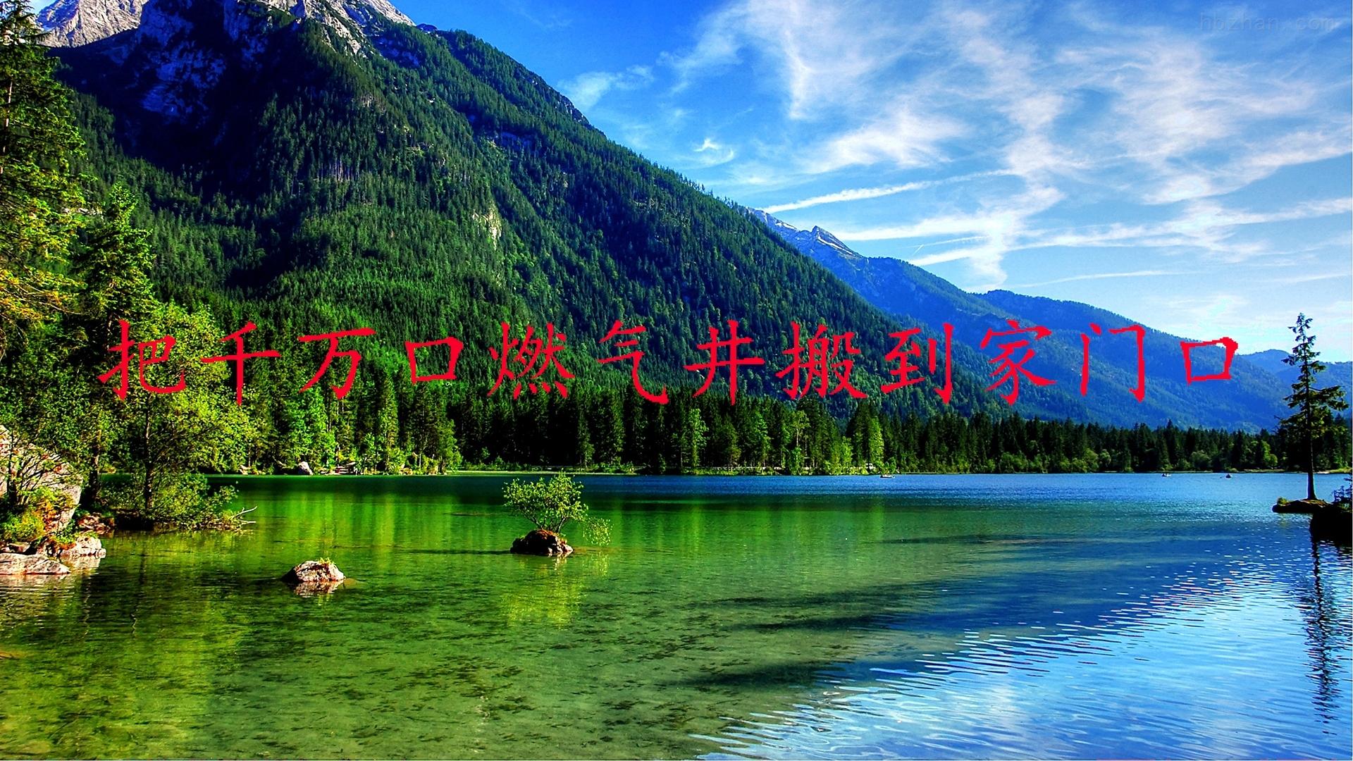大连惠川有机固废热解气化视频