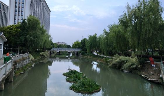 TOT+BOT!新疆若羌县若羌河西支河道生态治理建设项目招标