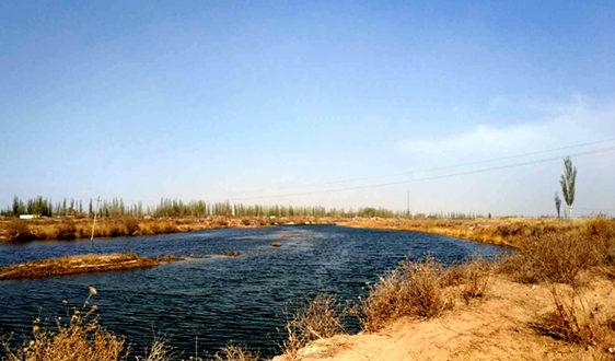 碳达峰、碳中和目标的提出将对水污染防治产生重要影响