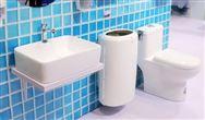 十年了!厕所革命都给世界带来了什么?