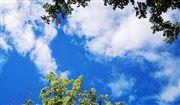 汤阴县住房和城乡建设局汤阴县城市污泥处置工程特许经营权项目-公开招标公告