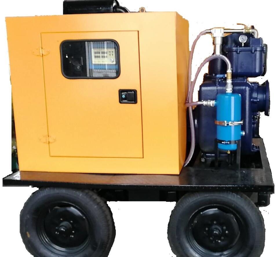 带防雨罩柴油机水泵