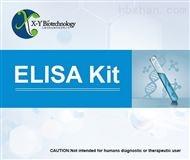 Hcy Elisa试剂盒