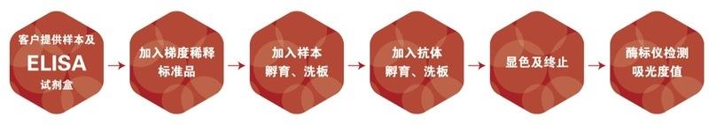 人肌红蛋白MYO/MBELISA试剂盒