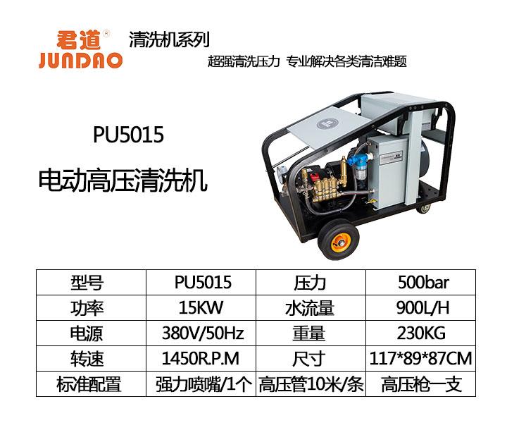 PU5015.jpg
