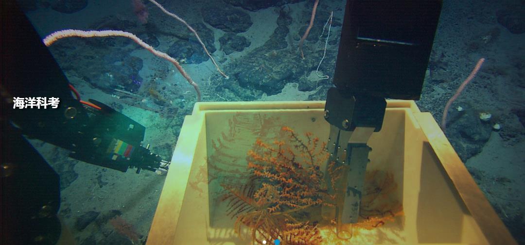 海洋科考.jpg