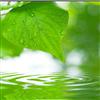 型号:7100百灵达-多参数水质分析仪 库号:M9406